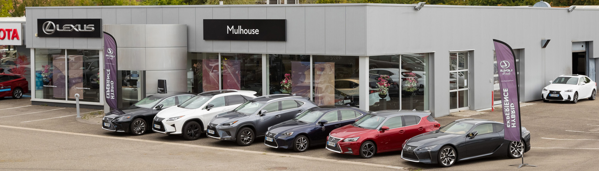 Concession Lexus Toys Plus Mulhouse